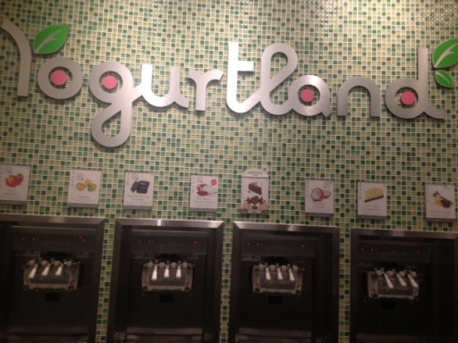Some of Yogurtland's many flavors